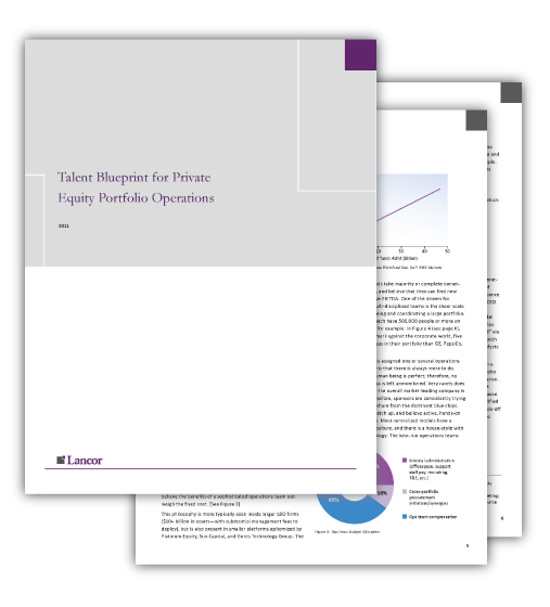 White paper talent blueprint for private equity portfolio operations talent blueprint white paperg malvernweather